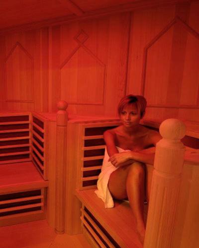 infrarotkabinen von eberl sauna aus dem zillertal eberl sauna blog. Black Bedroom Furniture Sets. Home Design Ideas